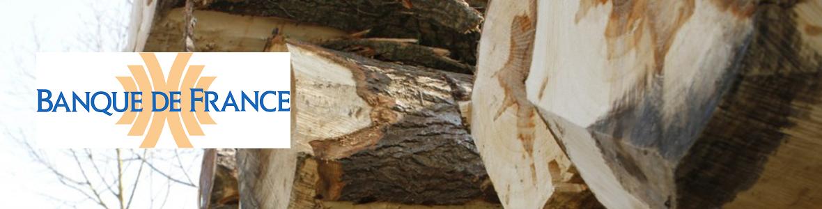 ucff volution du prix du bois d oeuvre sur pied 3e